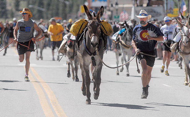 Pardner leads Kevin up Harrison Avenue at the start of the 62nd Anniversary International Pack Burro Race in Leadville as part of the Boom Days celebration Sunday.
