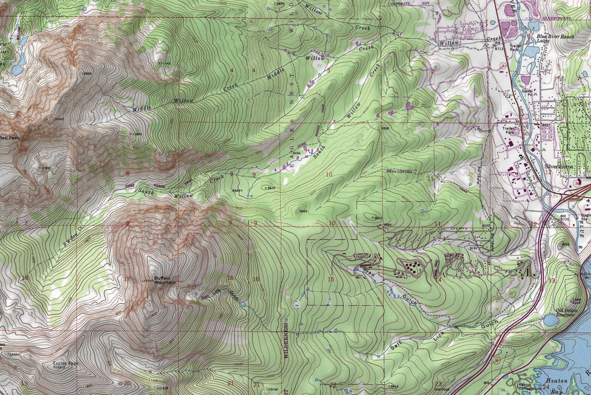 Buffalo Mountain Topo Map Swatch